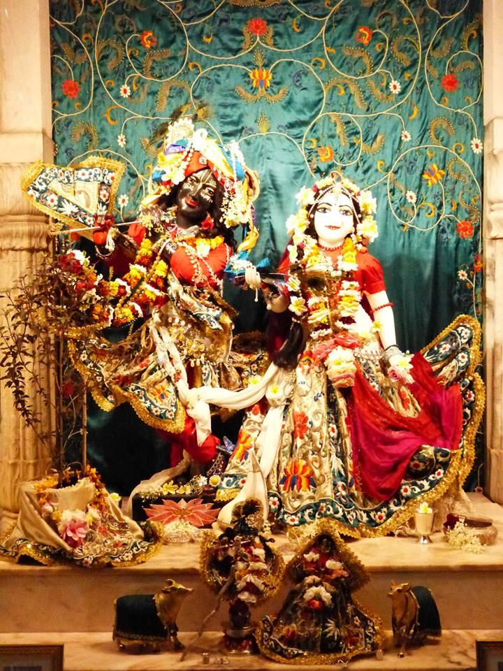 ISKCON New Govardhan Deity Darshan 12 Mar 2016 (13)