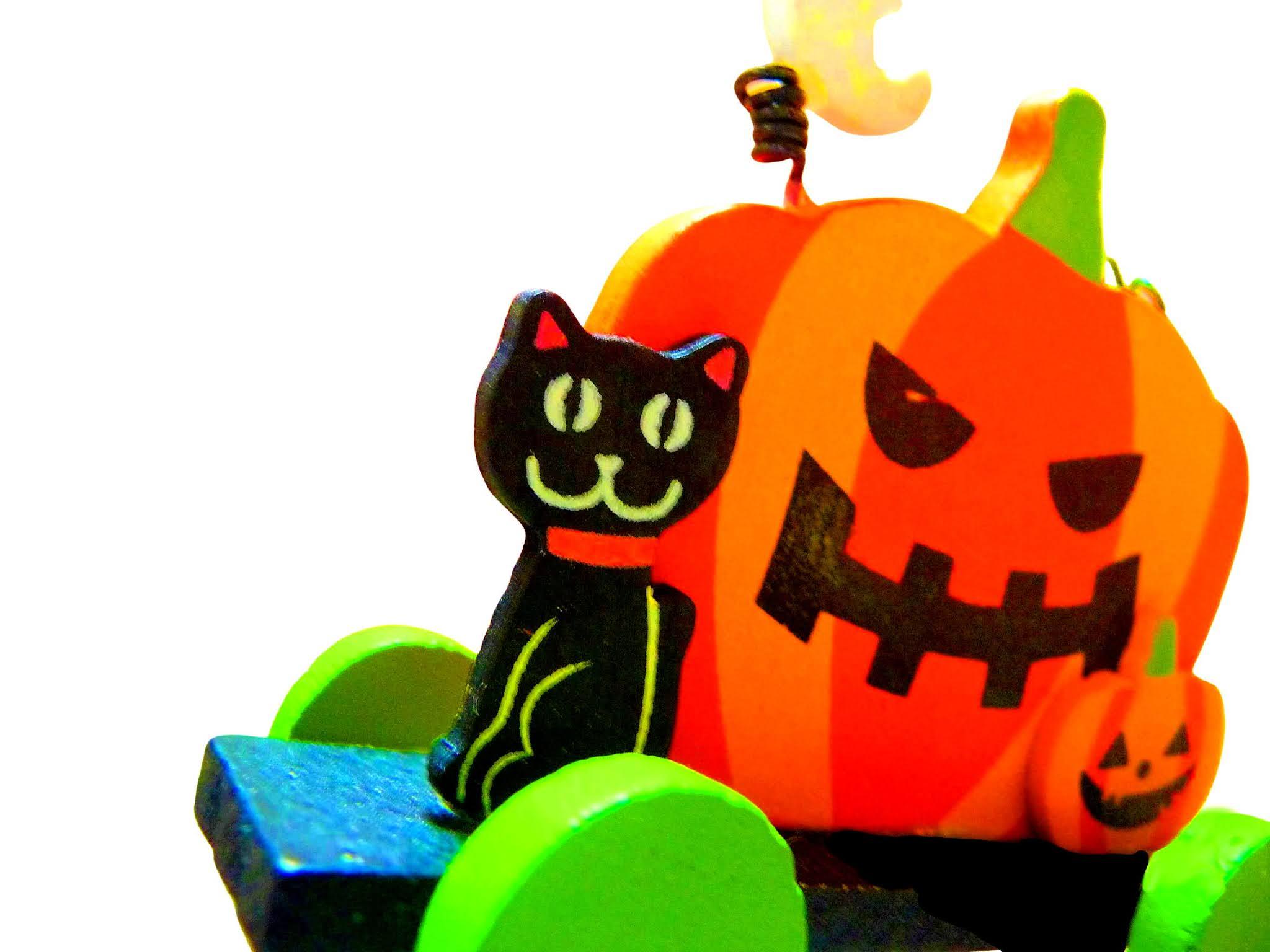 ハロウィン,かぼちゃ,秋,黒猫,雑貨,写真素材,autumn cherry blossoms, cosmos, autumn, flower, landscape, photograph