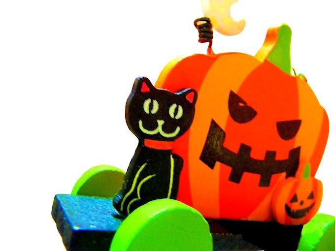 427 #ハロウィン #かぼちゃ #秋 #黒猫 #雑貨
