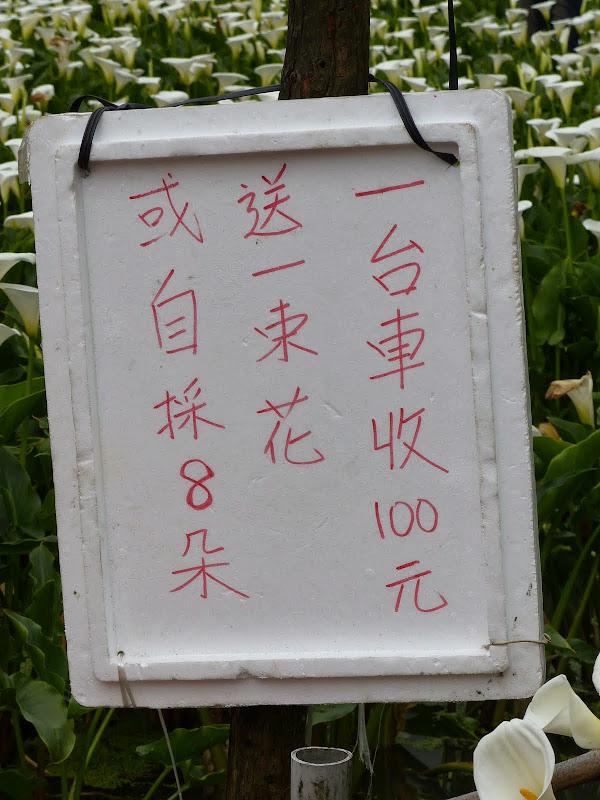 Yangminshan Shitoushan et Jinshan - P1040915.JPG