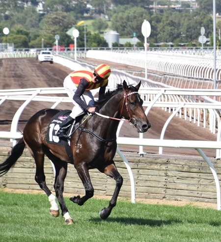 aus guineas_peaceful state 2