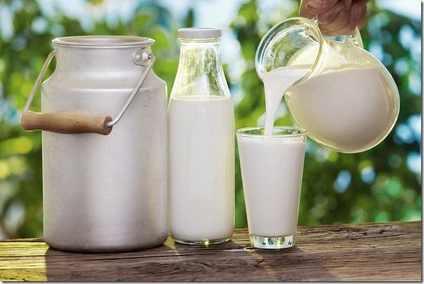 sữa DJ&A của úc