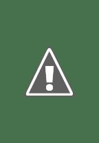 Watch Freedom Force Online Free in HD