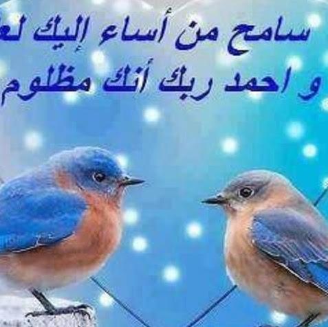 Tamer Elsayed
