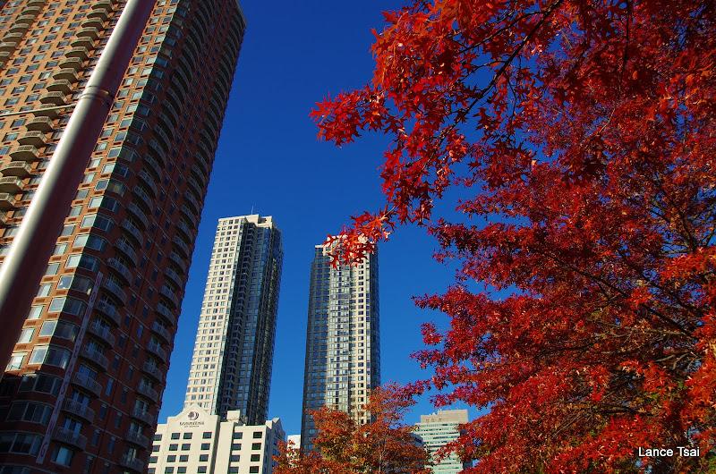 美國 Jersey City 楓紅隨拍 (K5+S17-70)