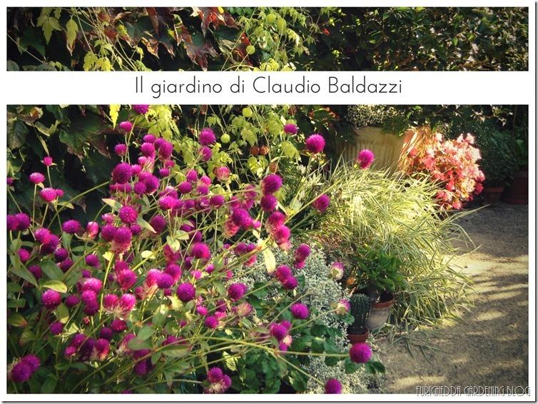 Il giardino di Claudio (15)