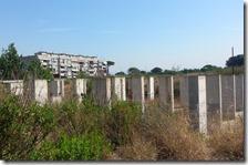 L'area abbandonata in viale Carlo Miranda