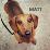 Matthew Olms's profile photo