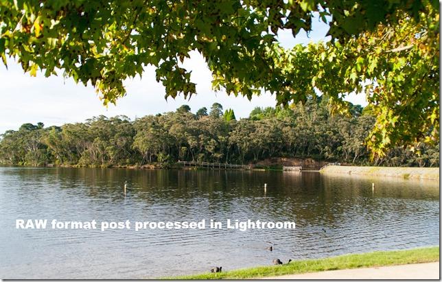 _IGP3780 Post processed in Lightroom
