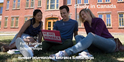 Apply for Humber International Entrance Scholarships