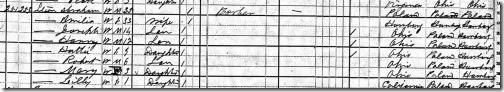 1880 Census Abraham Amelia Stein