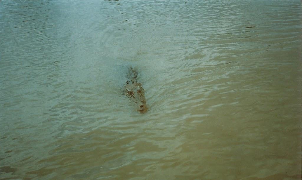 1230Adelaide River