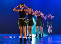 Han Balk Voorster Dansdag 2016-3939.jpg