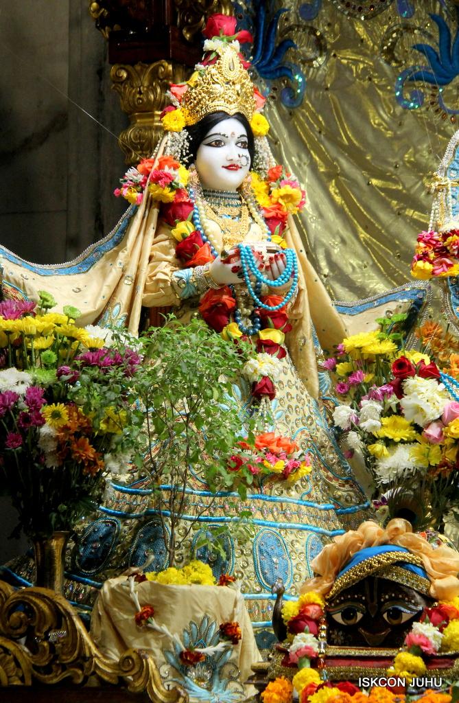 ISKCON Juhu Sringar Deity Darshan on 30th Dec 2016 (15)
