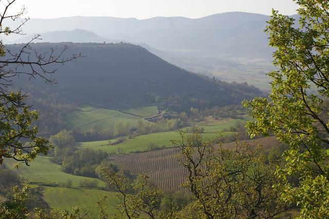 Les Hautes-Courennes en avril 2005. Au premier plan : champs de lavande ; au second : plateau de Coupon ; au troisième : vallée du Calavon. Au fond : le Grand Lubéron. Photo : J.-M. Gayman