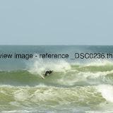 _DSC0236.thumb.jpg