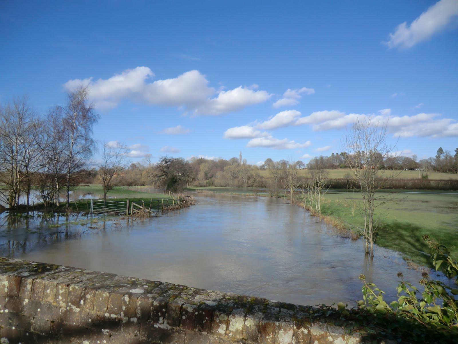 CIMG9937 River Eden outside Penshurst (in the floods)