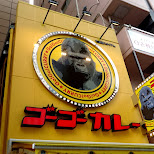 GoGo Curry - delicious Japanese curry dishes in Akihabara, Tokyo, Japan