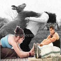 Como medir a flexibilidade do corpo