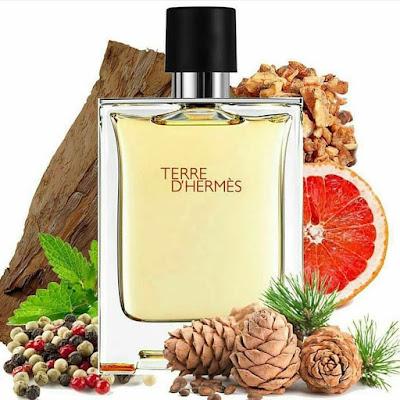 Perfume Terre D'hermes de Hermes