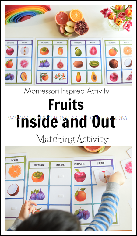 Fruit Unit:  Inside and Out Matching Activity