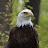 JOHN KENNEDY avatar image