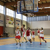 Basket 418.jpg