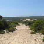 Dunes and Lagoon behind Big Marley Beach (112978)
