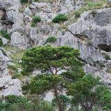 Mallorca 2012 - DSC_1013.JPG