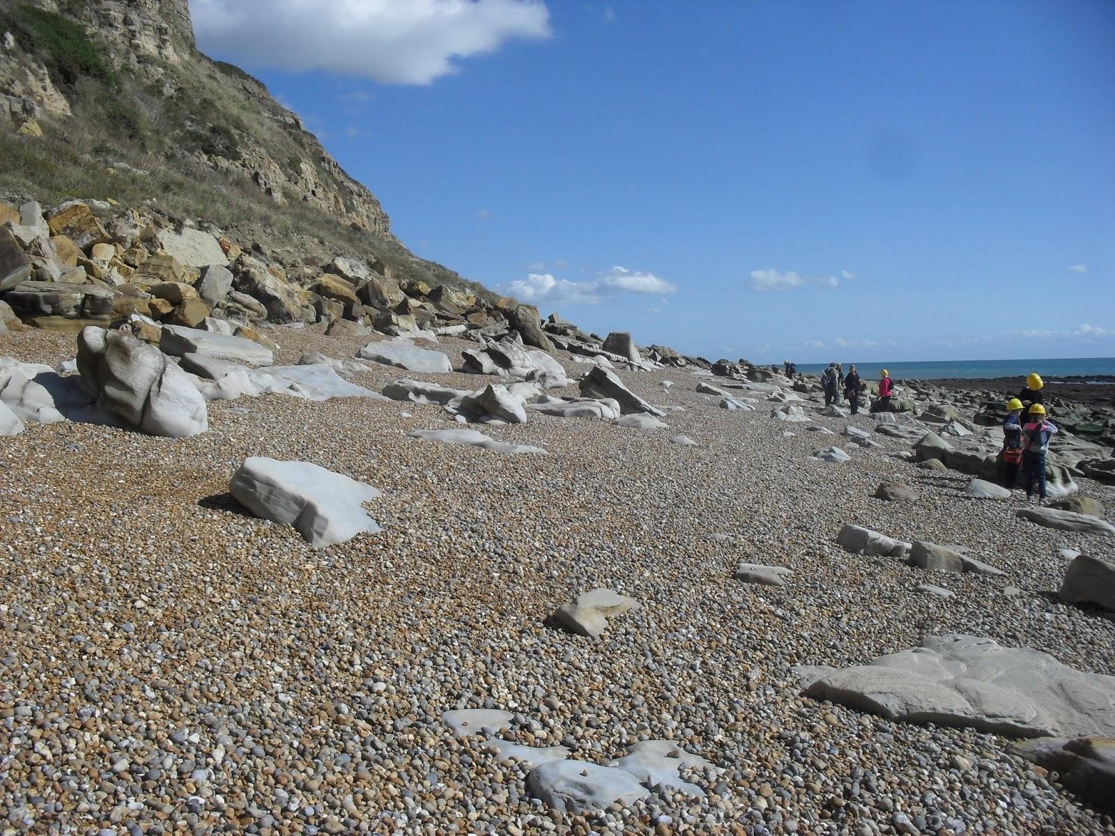 SDC11582 Seashore route to Fairlight Glen Beach