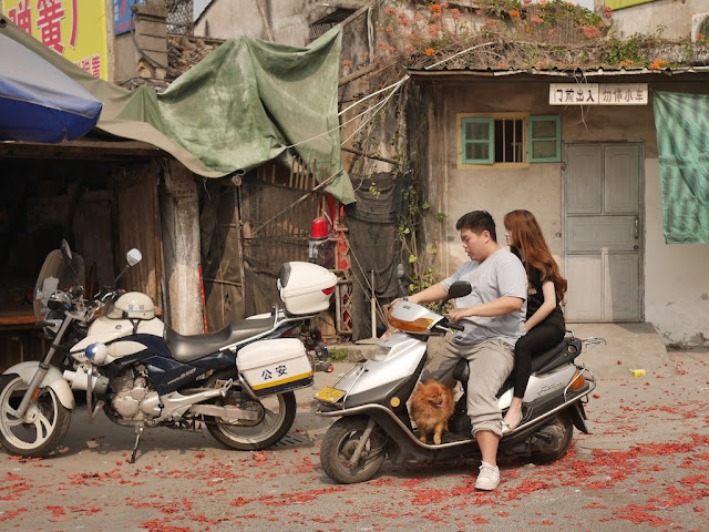 dog on a motor scooter with two people in Jieyang