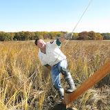 Guilford Salt Meadow Sanctuary Osprey Platform - sfs%252C10-25-09%2Bosprey%2Bplatform%2Binstall%252C094.JPG
