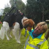 Survival voor Baas en Hond 2012 - IMAG0743.jpg