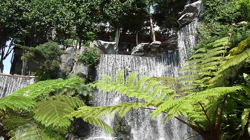 TAIWAN Taipei autour de Longshan Temple - P1120505.JPG
