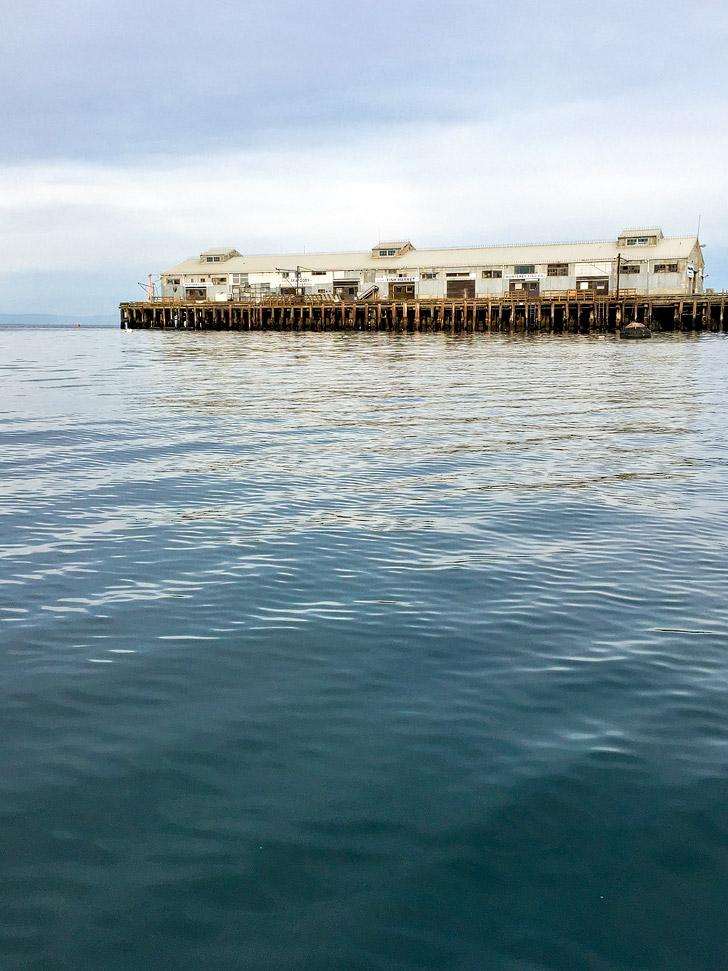 Monterey Fish Company.
