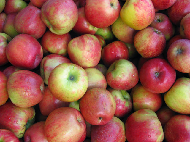 Apples from Bellewood Acres / Credit: Jonathan Lytle