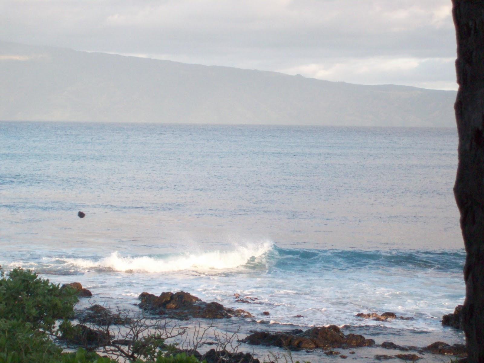 Hawaii Day 6 - 114_1691.JPG