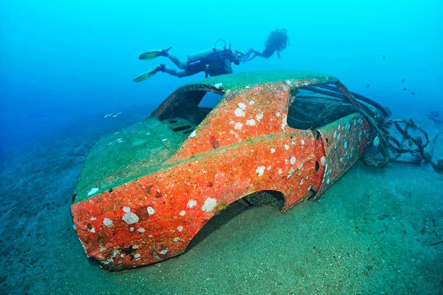 Cars Found Underwater : In the mustang you will find seahorses