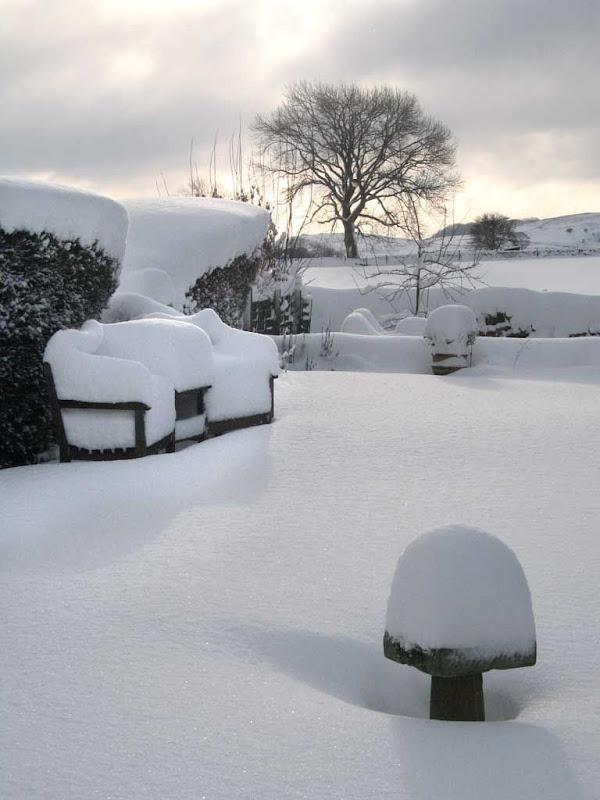 SnowBR3