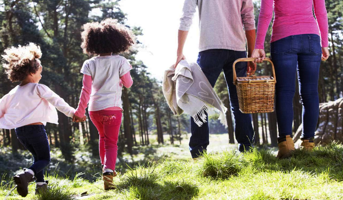 find kids friendly attractions