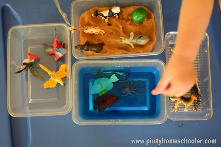 Animal Sorting in Land, Water, and Air