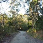 Cullamine Rd near Terrey Hills (307874)