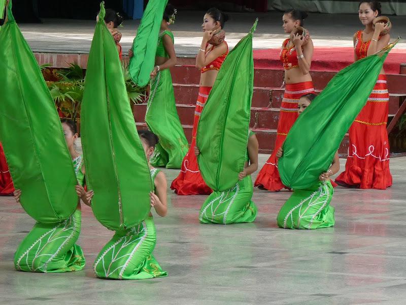 Chine . Yunnan..Galamba, Menglian Album A - Picture%2B048.jpg