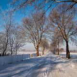 Winter - Winter-011.jpg