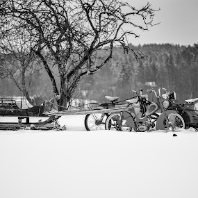 You're fired by Jørgen Schei - Black & White Objects & Still Life ( motorcycles, winter, tree, black and white, snow, sled, no reindeer )