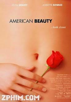 Vẻ Đẹp Kiểu Mỹ - American Beauty (1999) Poster