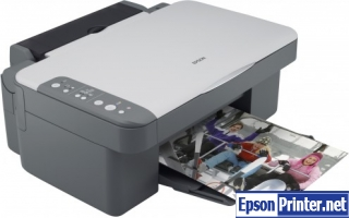 Get Epson DX3800 resetter application