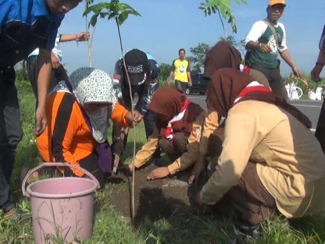 Hari Sejuta Pohon, Pemuda dan Pelajar di Jombang Gelar Aksi Cabut Paku dan Tanam Pohon
