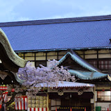 2014 Japan - Dag 8 - marjolein-IMG_1255-0096.JPG