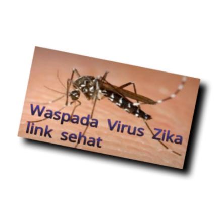 Virus Zika Dan Cara Penularannya
